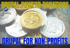 Drupal-Powered Donations: Increase Your Non-Profit Fundraising