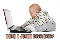Using a Junior Developer?